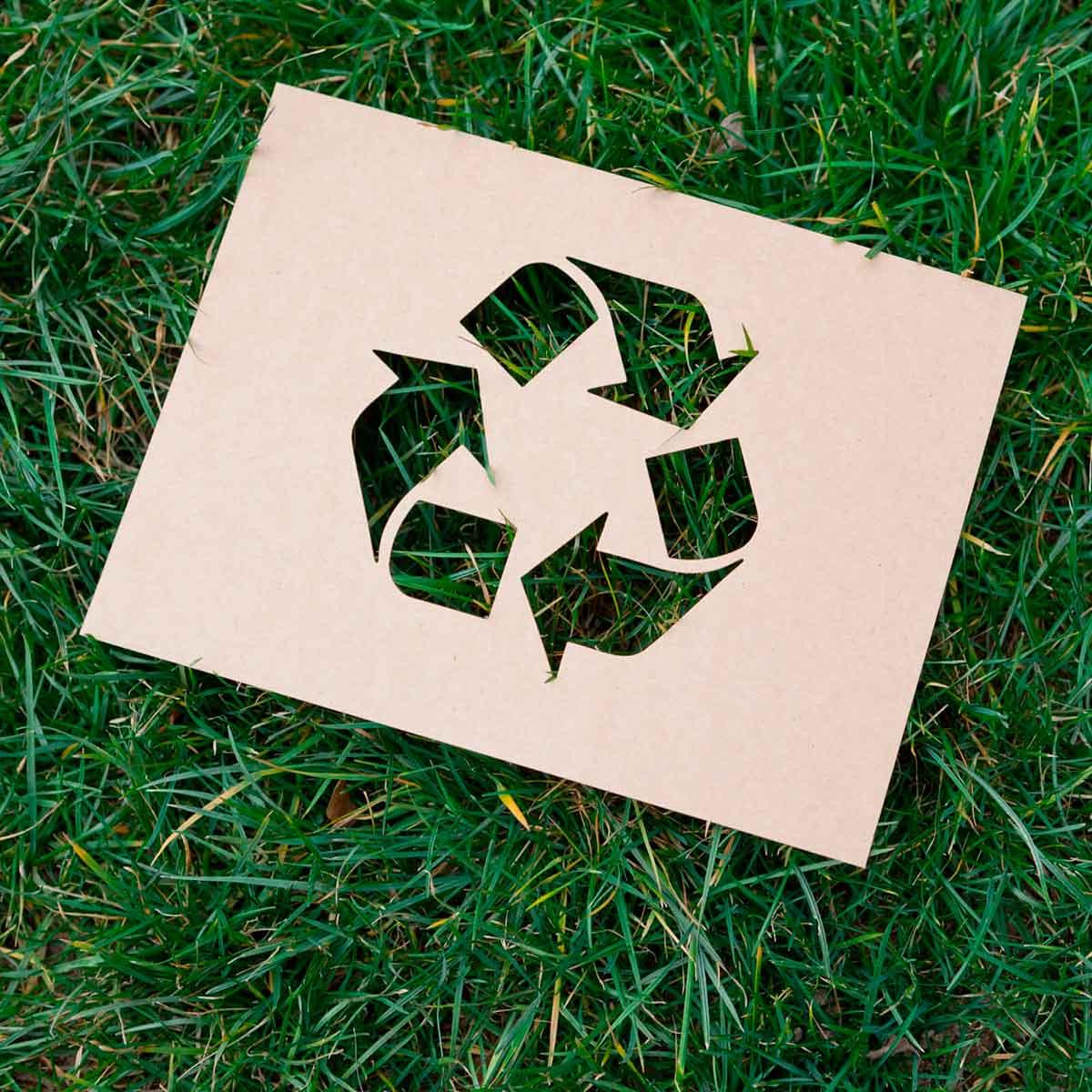 ¿Cómo elegir el mejor packaging ecológico para tu negocio?