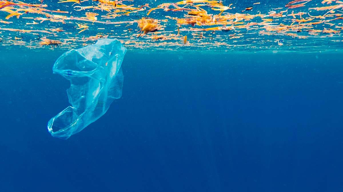 España apuesta por un acuerdo global para hacer frente a la contaminación marina por plásticos