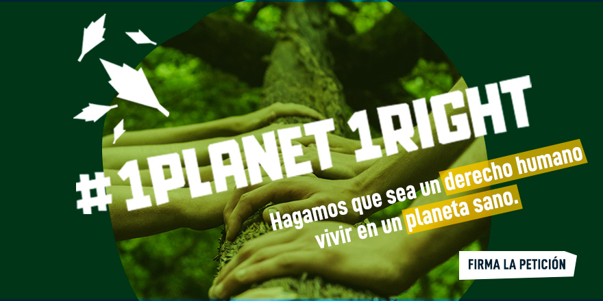 SEO/BirdLife solicita al presidente del Gobierno que lidere el camino para convertir el derecho al medio ambiente en un derecho humano universal