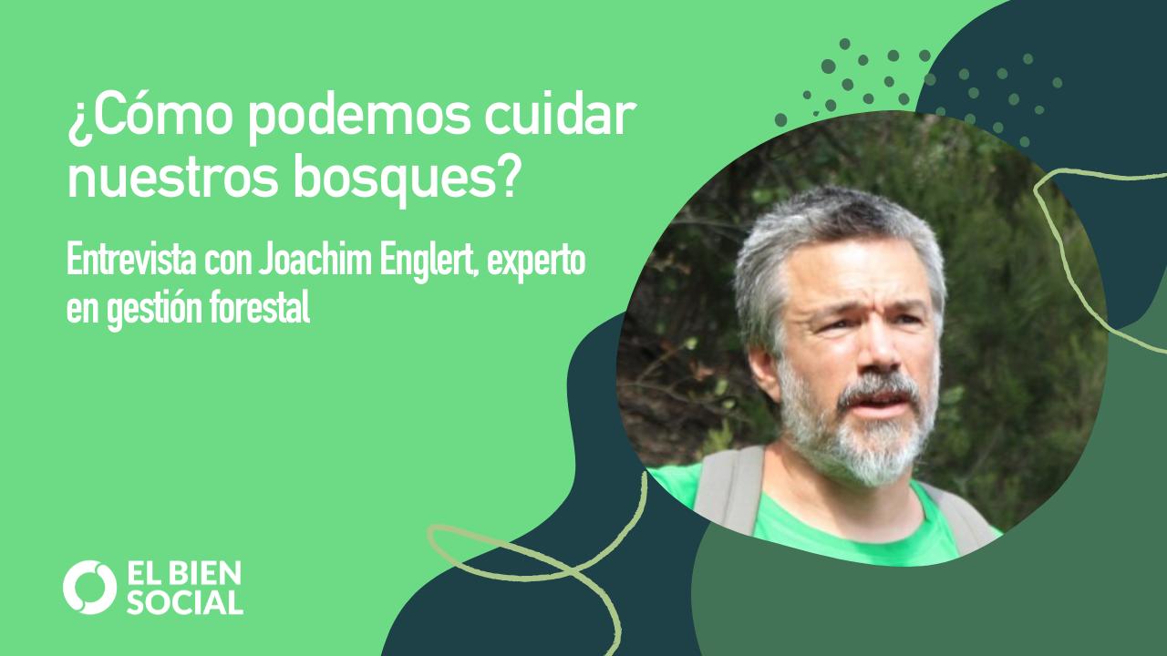 Podcast: Descubriendo cómo Gestionar nuestros Bosques de forma Sostenible con Joachim Englert, gestor forestal y emprendedor social